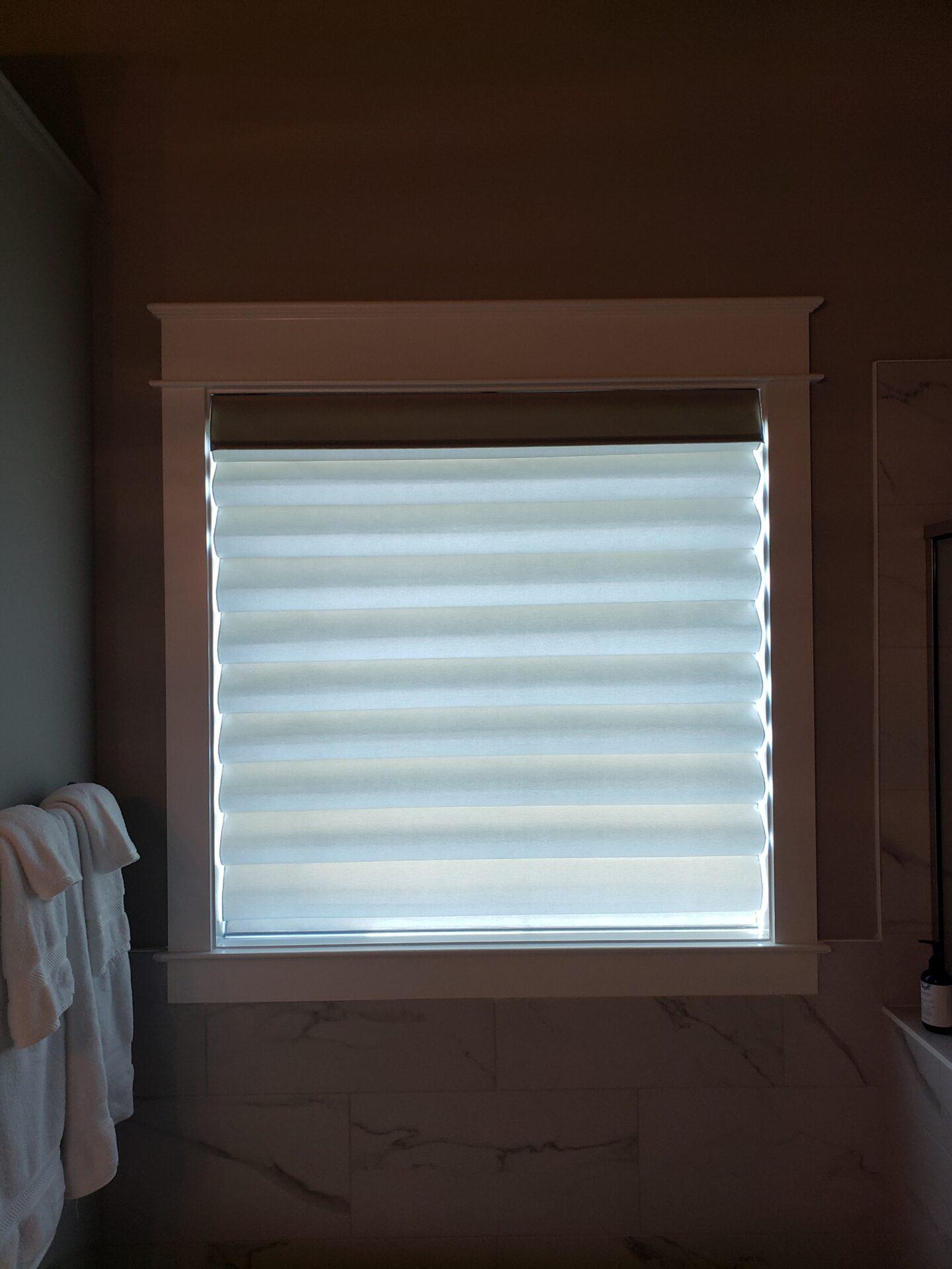 Pleated Window Shades